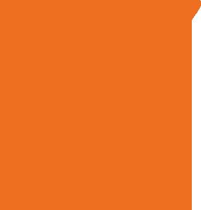 checkmark-orange